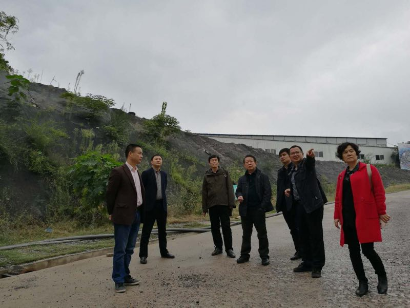 2017年10月18、19日,绿色矿业示范区项目组一行来到黄石铁山、麻城二地矿山企业开展调研工作